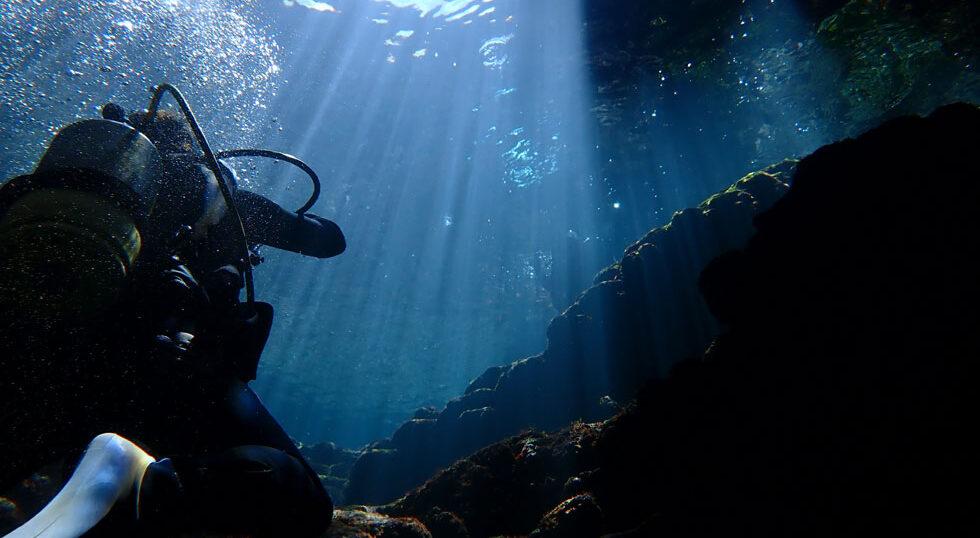 カラカラ先生ダイビング過去最高の光
