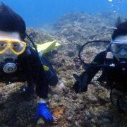 カラカラ先生ダイビング 体験ダイビング