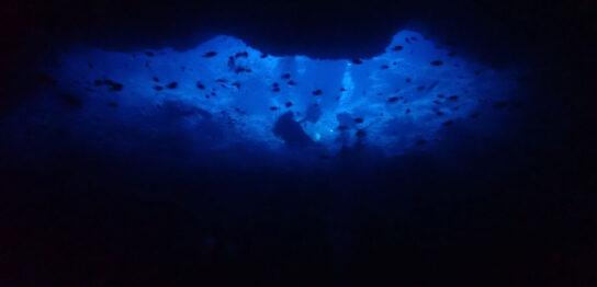 カラカラ先生ダイビングALL地形ダイブでしたっ!!