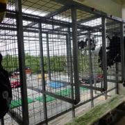 カラカラ先生のダイビングスクール 器材干場