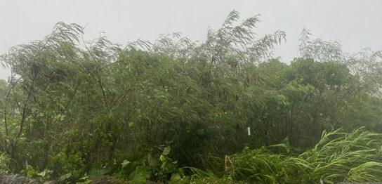 台風14号 宮古島