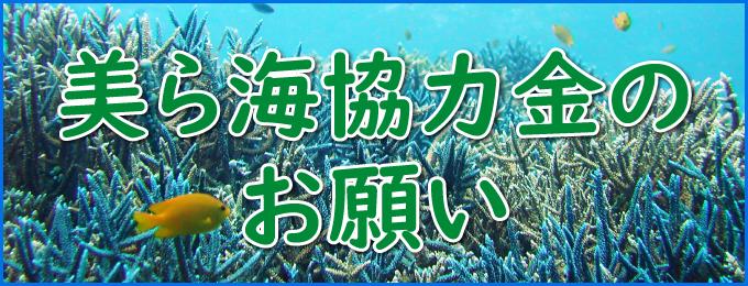 美ら海協力金のお願い